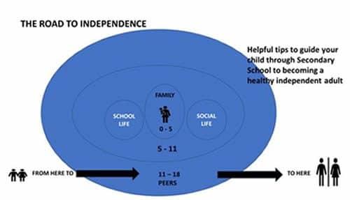 CAMHS diagram